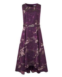 pretty dress from JD Williams