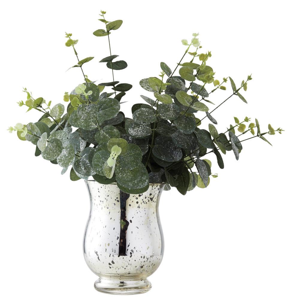 Eucalyptus in silver vase