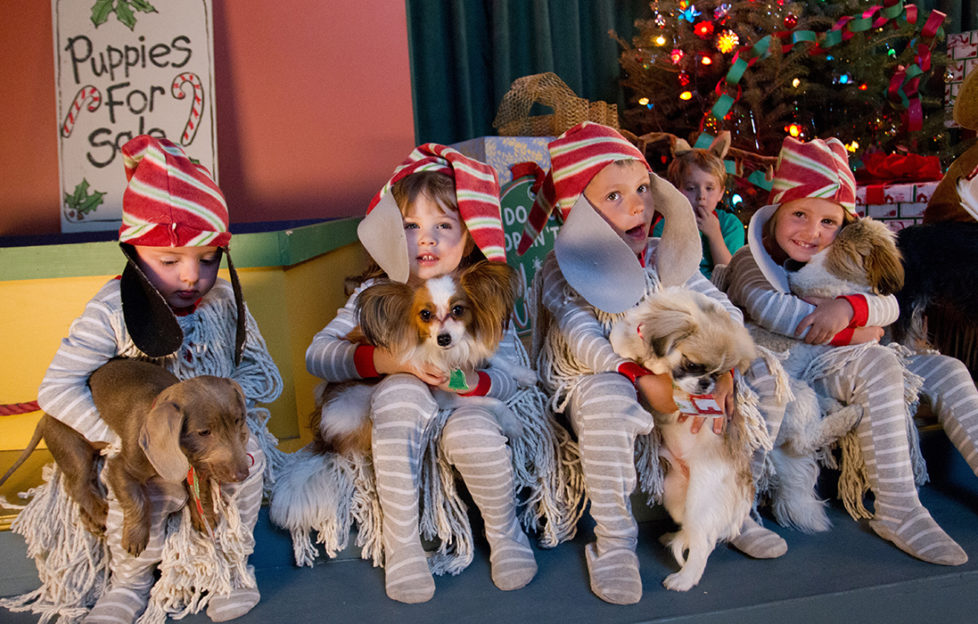Four children in pale grey onesies, elf hats with dog ears and mop-string tunics, all cuddling a puppy. Sign says Puppies For Sale