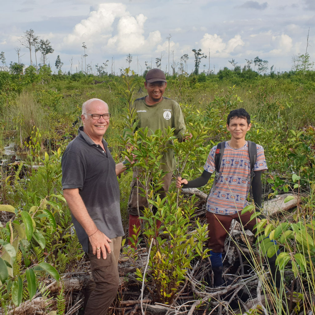 Three people in scrubland which is former rainforest, pointing out new trees growing