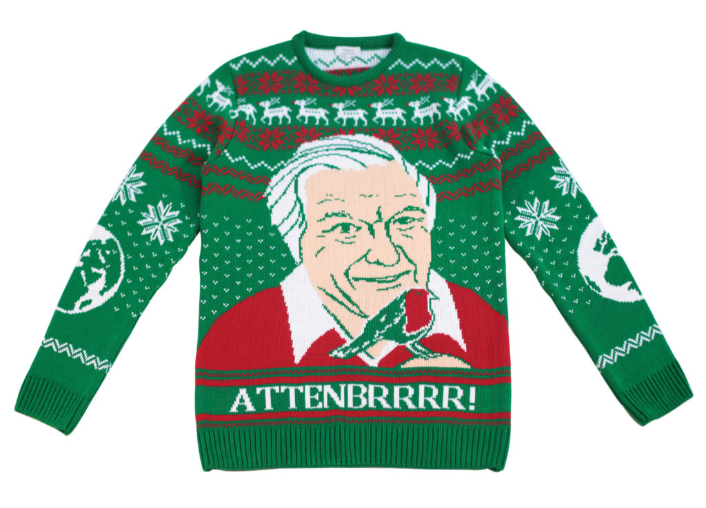 Green, white and red machine knitted jumper with Sir David Attenborough with a robin on his hand